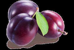 plum7
