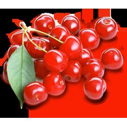 sour cherry 2