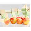 white cherry1